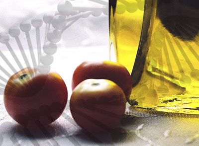 olive-oil-tomatoes-dna
